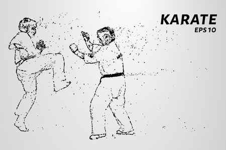 Karate of particles. Karate consists of small circles Vektorové ilustrace