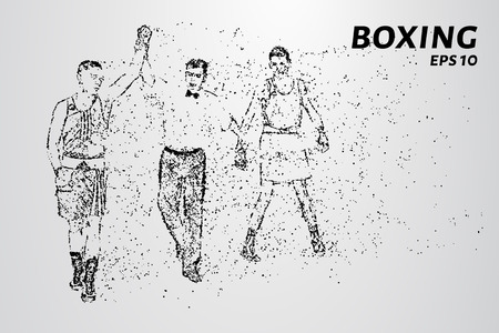The Boxing of the particles. The referee determines the winners in the ring. Vector illustration.