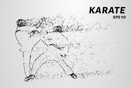 Karate of particles. Karate consists of small circles.