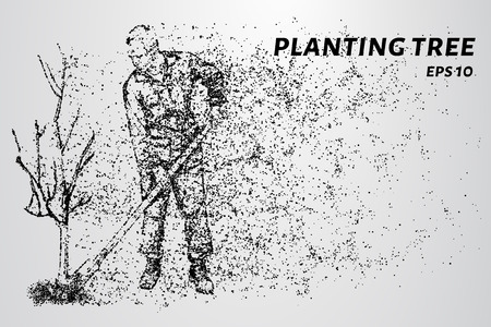 Working of the particles. Man planting a tree.