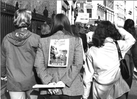 protestors: London, England - March 11, 1978 - Animal rights protestors march in London to demonstrate against seal pup hunting in Newfoundland.