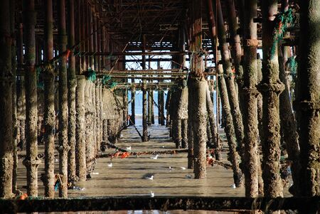 substructure: The iron substructure under the Victorian pier at Hastings in East Sussex, England in April 2009. Opened in 1872, the pier was badly damaged by fire in October 2010.