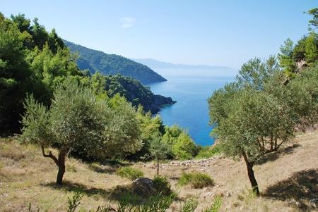 sporades: Looking down to the coastline at Agii Anargiroi on the Greek island of Alonissos.
