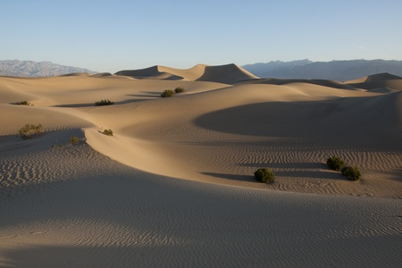 Mesquite Dunes ,Death Valley,National Park,  Eastern California,United States of America photo