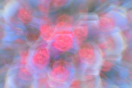 phenomena: Abstract background, flowers