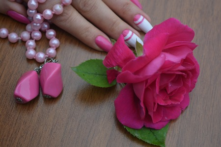 A beautiful rose and woman hand