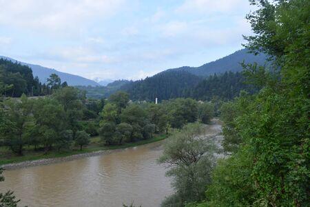 Natural background, trees, river, landscape