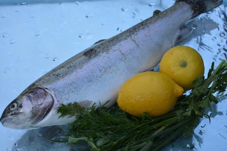 fish tank: Fish, reflected in water, lemons Stock Photo