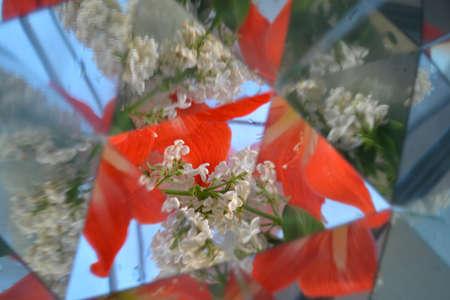 Abstract background, kaleidoscope effect