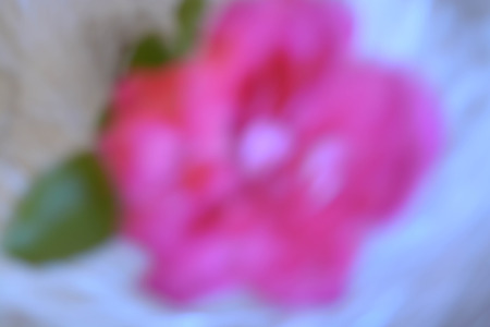 Abstract background, flowers