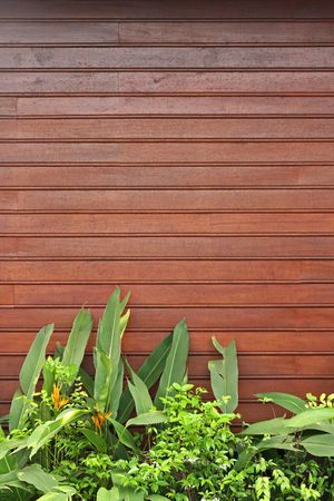 upper half: Red brown lath wall with fresh green plants and flowers in the foreground. Space for additional text in the upper half. Vertical perspective. Stock Photo