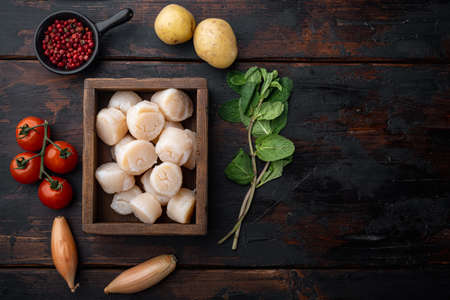 Sizzling seared scallops ingredient, top view, on dark wooden background with copy space