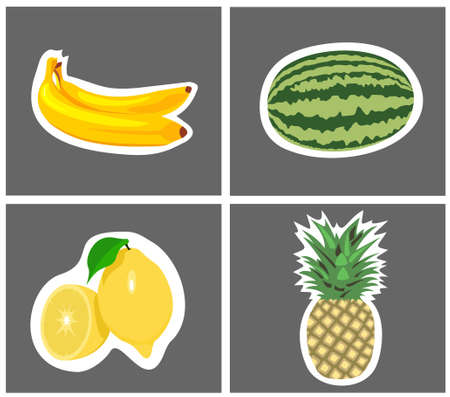 four species of fruit with background,  Vector