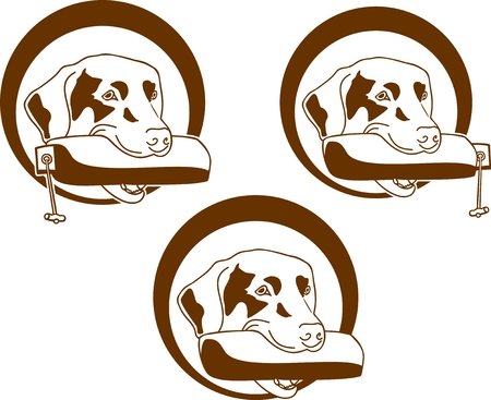 carries: hunting dog carries a dummy for your future use Illustration
