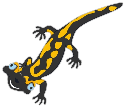 cheerful salamander on a walk for children and for you