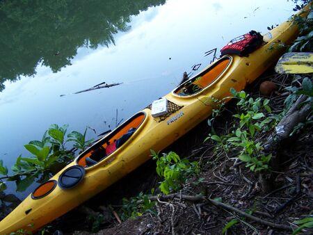 Jungle Kayaking Stock Photo