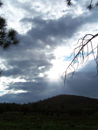 Silhouette trees and hill sun comeing through clouds