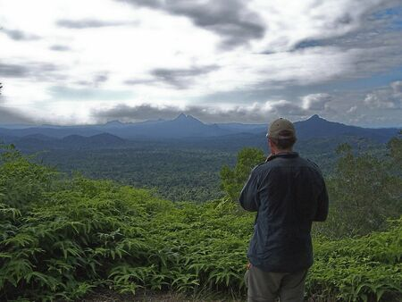 man looking at view of rainforest
