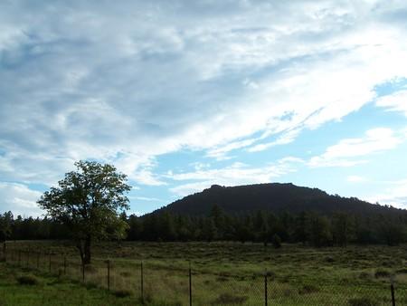 blue sky over the feild Stock Photo