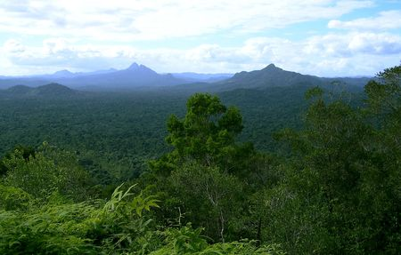 mountain view in the rain forest Stock Photo