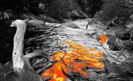 Orange burst in river