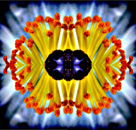 Psychedelic Flower