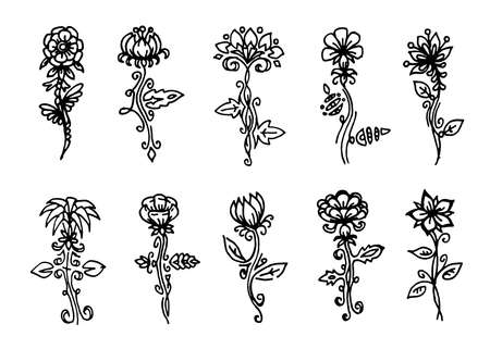 vector flowers set, black line art isolated on white background, floral design collection, outline flowers, trim, sketch, doodle style,