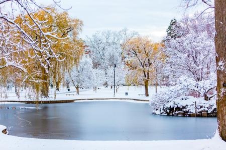 Boston Common in the winter. Stock Photo