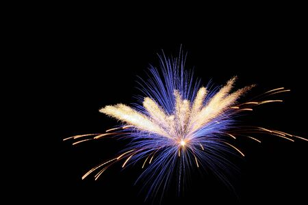 Fireworks exploded in the sky to sylvester