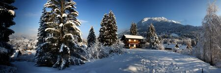 House, a charming house in the alps