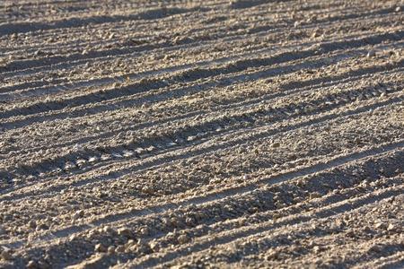 Farm, the soil of a freshly plowed farm