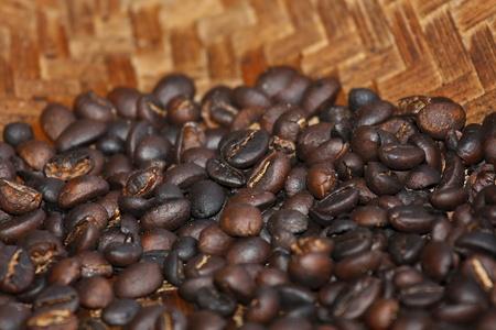 shit: Bali coffee, shit coffee, luwak coffee