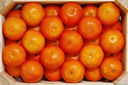 mandarine: Mandarine Mandarin Stock Photo