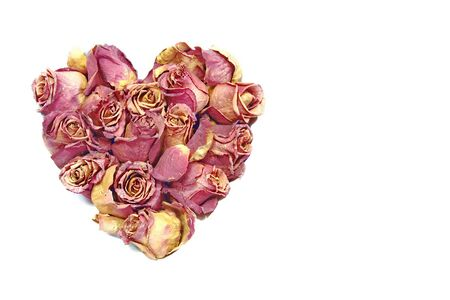 rose heart Standard-Bild