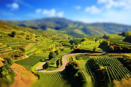 Kaiserstuhl is a wine-growing region in Germany Stock Photo