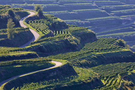 Kaiserstuhl is a wine-growing region in Germany Stock fotó