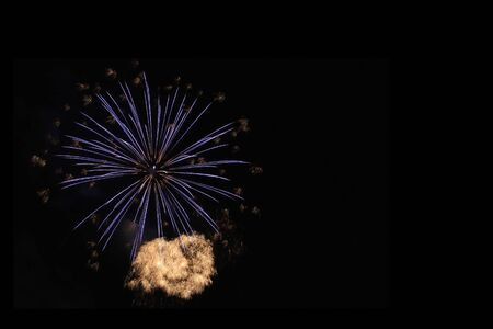 Firework flower in front of black background and  happy new year 2020 Banco de Imagens