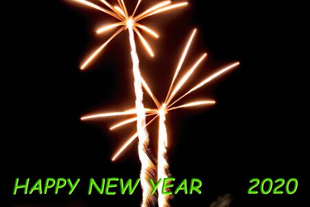 Firework flower in front of black background and  happy new year 2020 Stok Fotoğraf