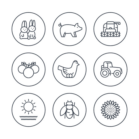 crop circles: Farm, ranch line icons in circles, tractor, harvester, hen, pig, crop, vegetables icons, vector illustration Illustration