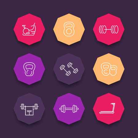 gym equipment: Gym equipment line icons on color octagonal shapes, illustration