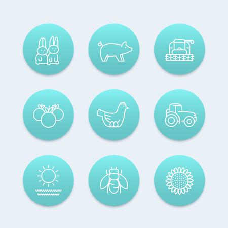 ranch: Farm, ranch line icons, hen, pig, crop, vegetables, sunflower, harvester, agrimotor