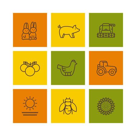 ranch: Farm, ranch line icons, rural machinery, agrimotor, hen, pig, rabbits, vegetables, vector illustration Illustration