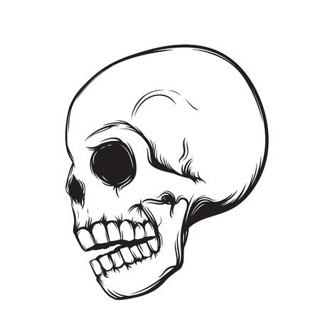 halloween tee shirt: skull, side view, isolated on white, vector illustration