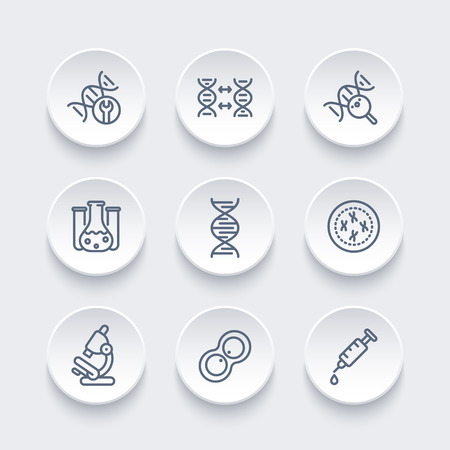 deoxyribonucleic acid: genetics line icons, dna chain, cell, research, lab, genetic modification, vector illustration Illustration