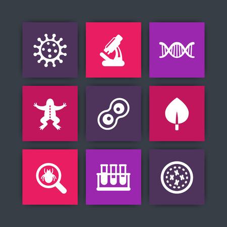 meiosis: Biology icons, cell, microscope, test-tubes, virus, genetics Illustration