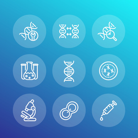modification: genetics line icons set, dna chain, replication, research, lab, gmo, genetic modification Illustration