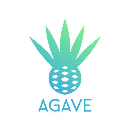 agave: planta de agave, plantilla de la flor aislada en blanco Vectores