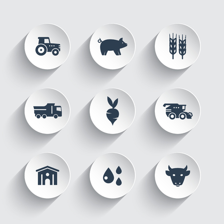 Agricultura, iconos de cultivo establecidas, ganado, cerdos, hangar, Cosechadora, agrimotor, verduras