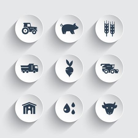 Agriculture, farming icons set, cattle, pigs, hangar, combine harvester, agrimotor, vegetables Illustration