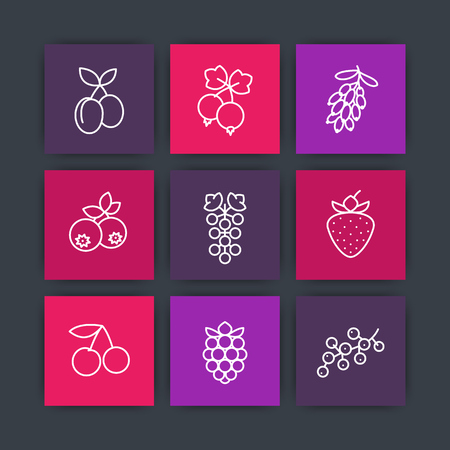 whortleberry: Berries line icons set, raspberry, blueberry, cherry, grape, barberry, plums, strawberry, currant, cranberry harvest, vector illustration Illustration